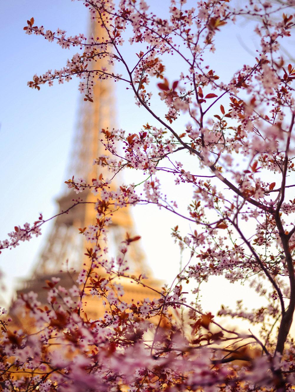 Focus-Paris