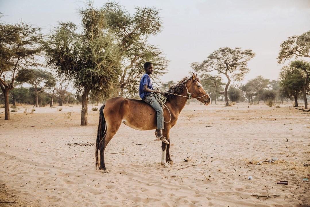FDowson.Senegal-4