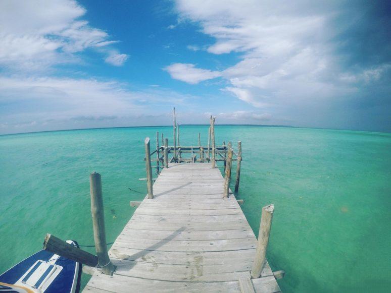 jellyfish-lake-kakaban-indonesia-4