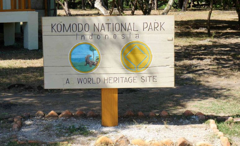 5 Reasons To Explore Komodo National Park Komodo-image2