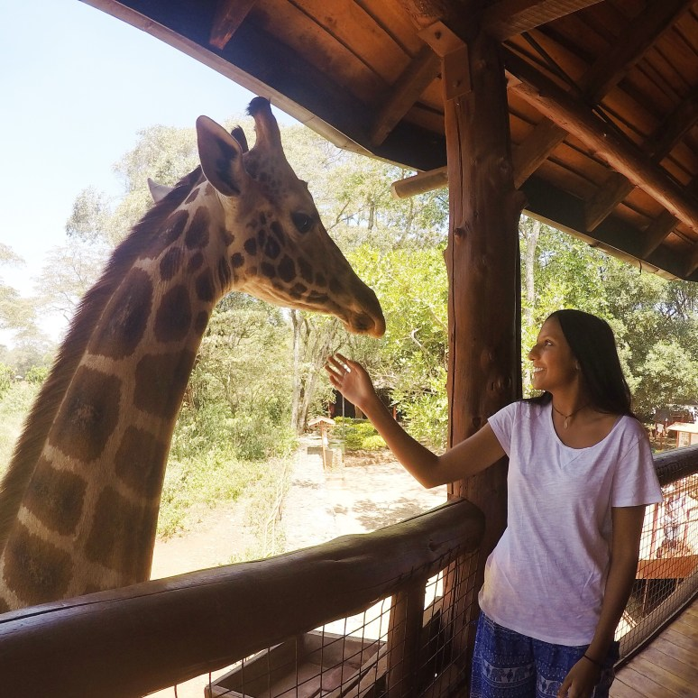 6-TIPS-FOR-PICKING-THE-PERFECT-TRAVEL-BUDDY-giraffe