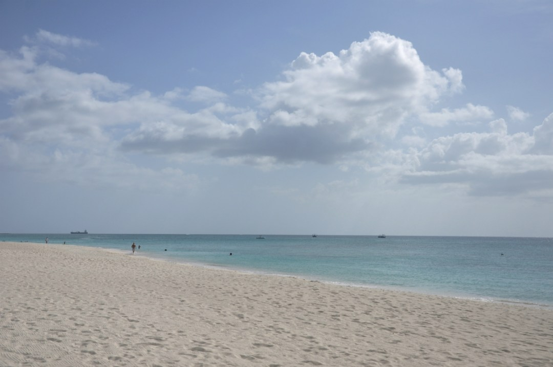 WHAT TO DO & SEE ON THE CAYMAN ISLANDS