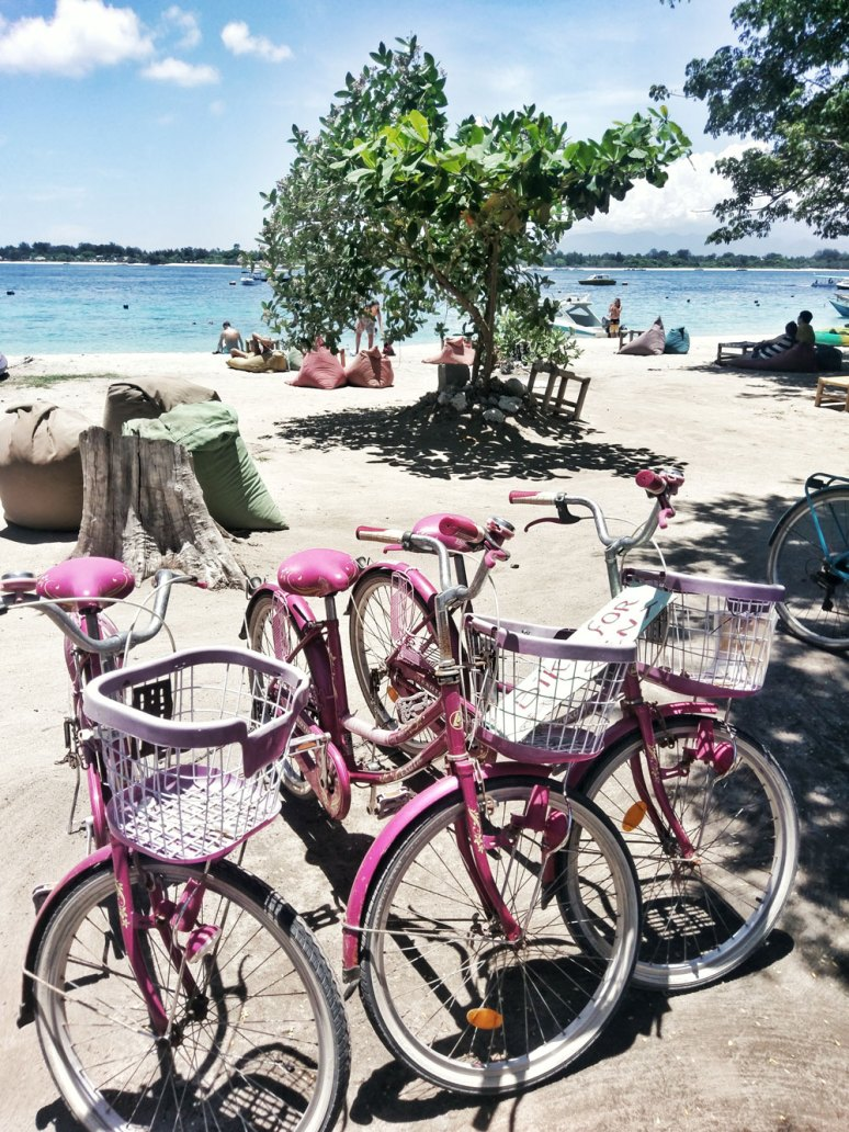 WHY YOU SHOULDN'T MISS GILI TRAWANGAN