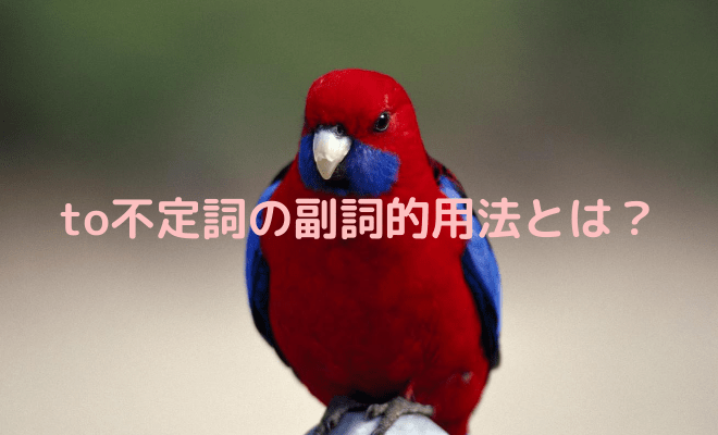 to不定詞の副詞的用法の説明