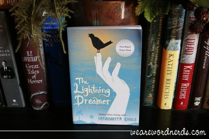 The Lightning Dreamer | wearewordnerds.com