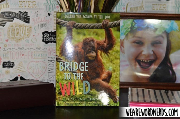 Bridge to the Wild: Behind the Scenes at the Zoo by Caitlin O'Connell