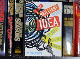 My Brilliant Idea (And How It Caused My Downfall) by Stuart David
