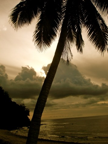 Fiji Island