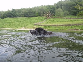 Swimming in Rydal