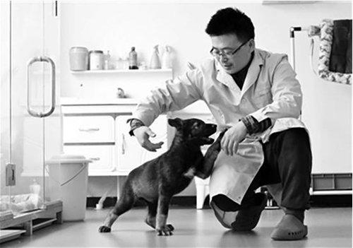 China kloont top-polityhund vöär körtere upleidingstyd