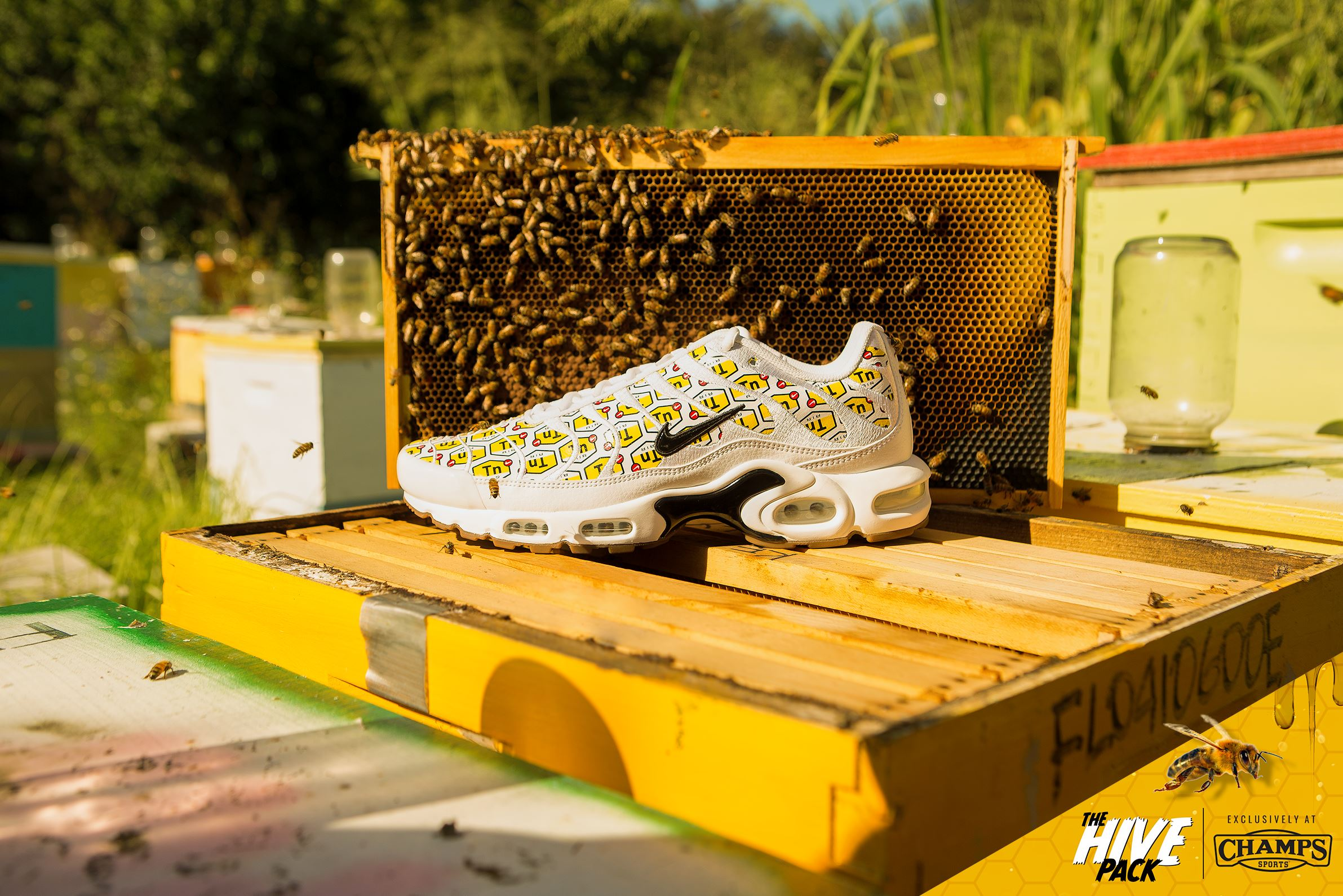 85dbc783fe nike air max plus hive pack champs exclusive - WearTesters