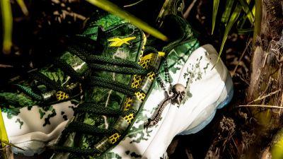 the predator reebok dmx run 10 spine trophy