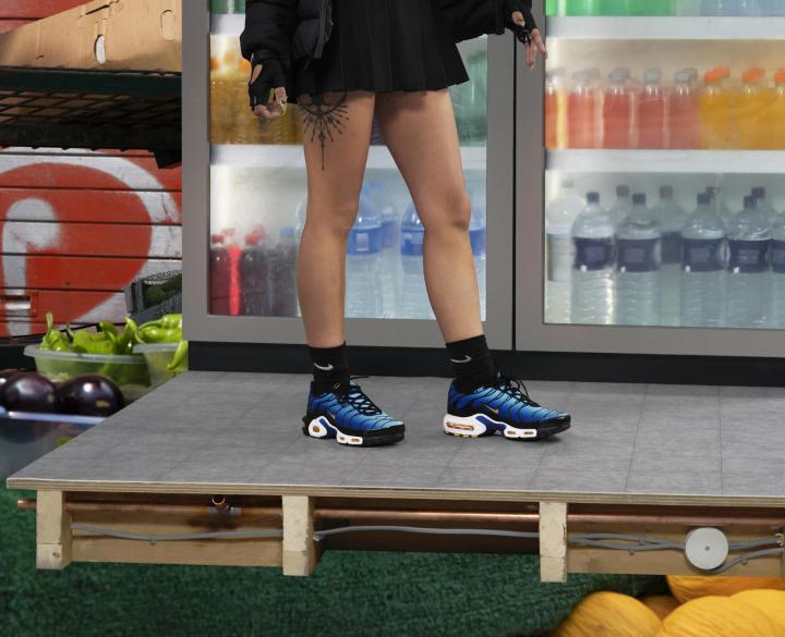 Nike air Max Plus 2018