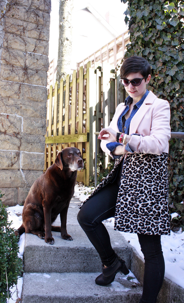 Pink coat and Chocolate Lab