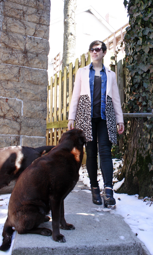 River Island Pink coat and Chocolate Lab
