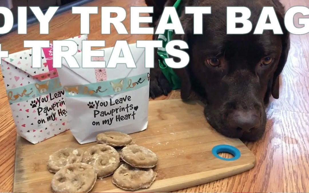 DIY Valentine Dog Treat Recipe + Goodie Bag