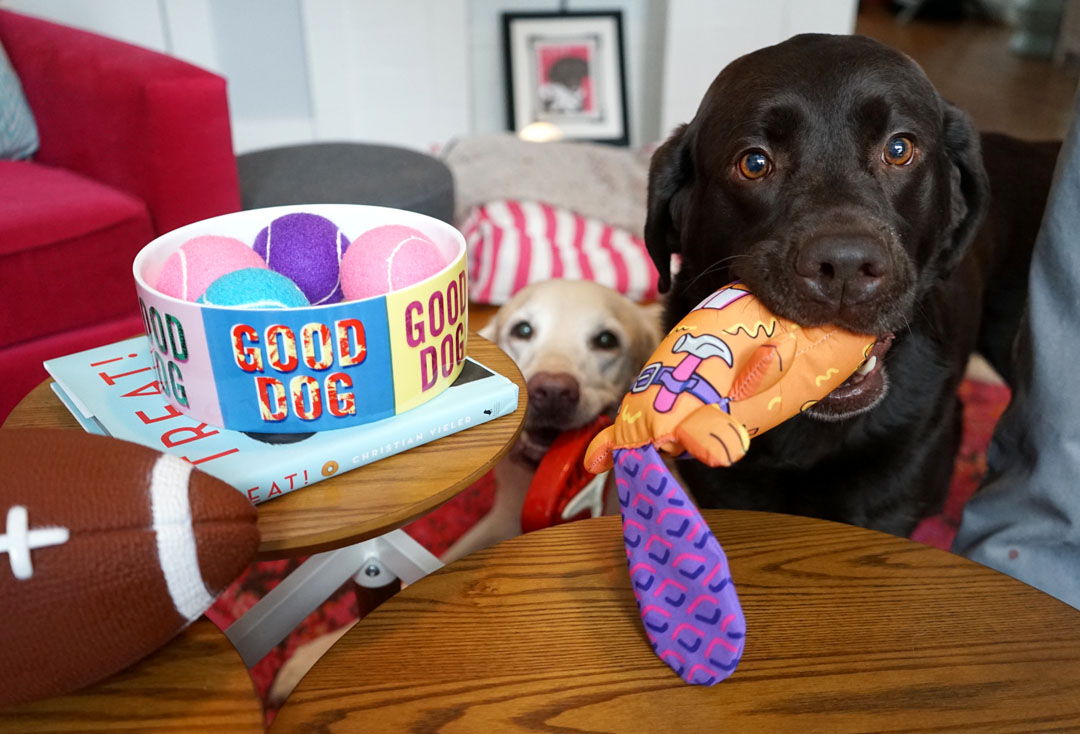 How To Host A Puppy Bowl Party and Clean Up After