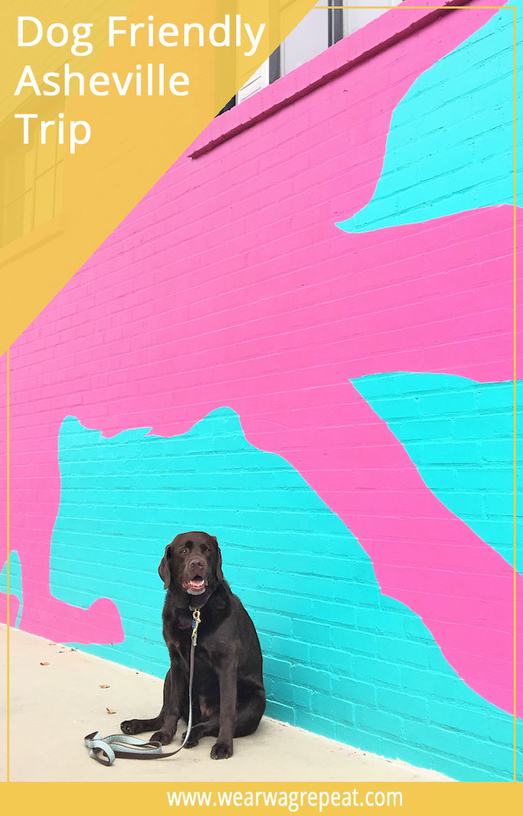 The Dog Friendly Asheville Guide