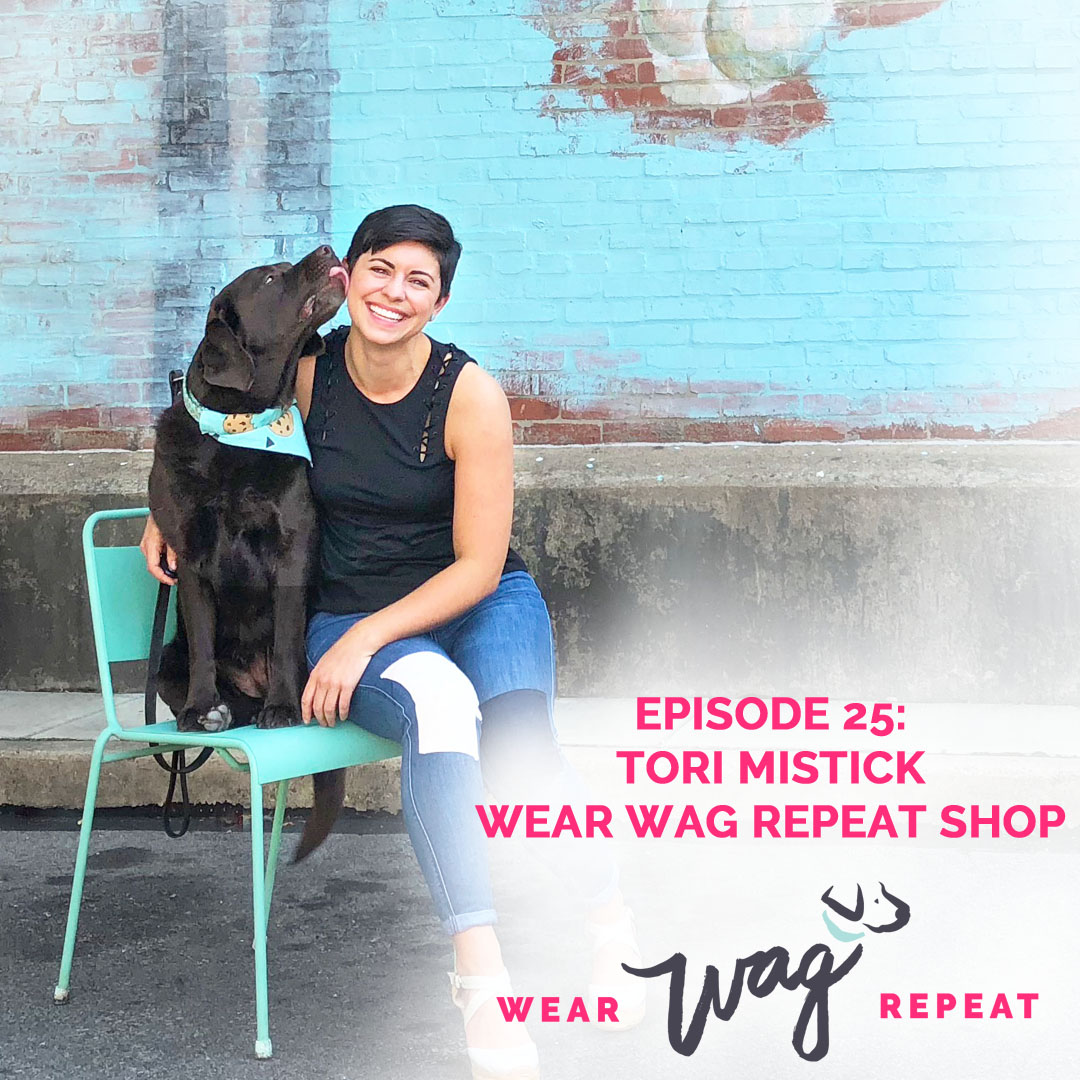 Podcast Episode 25: Creating An Online Shop