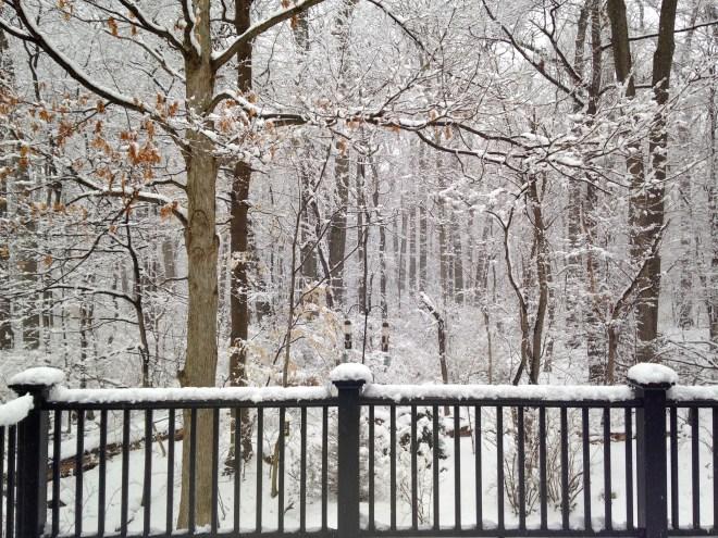 6Spring_Snow