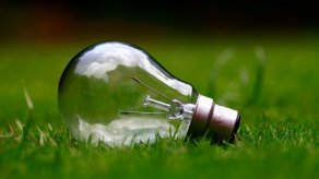 A light bulb in the grass