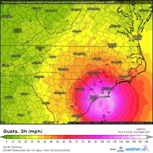 ECMWF Wind Gusts at Landfall