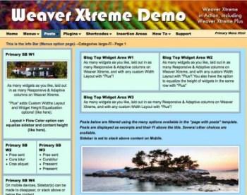 demo-site