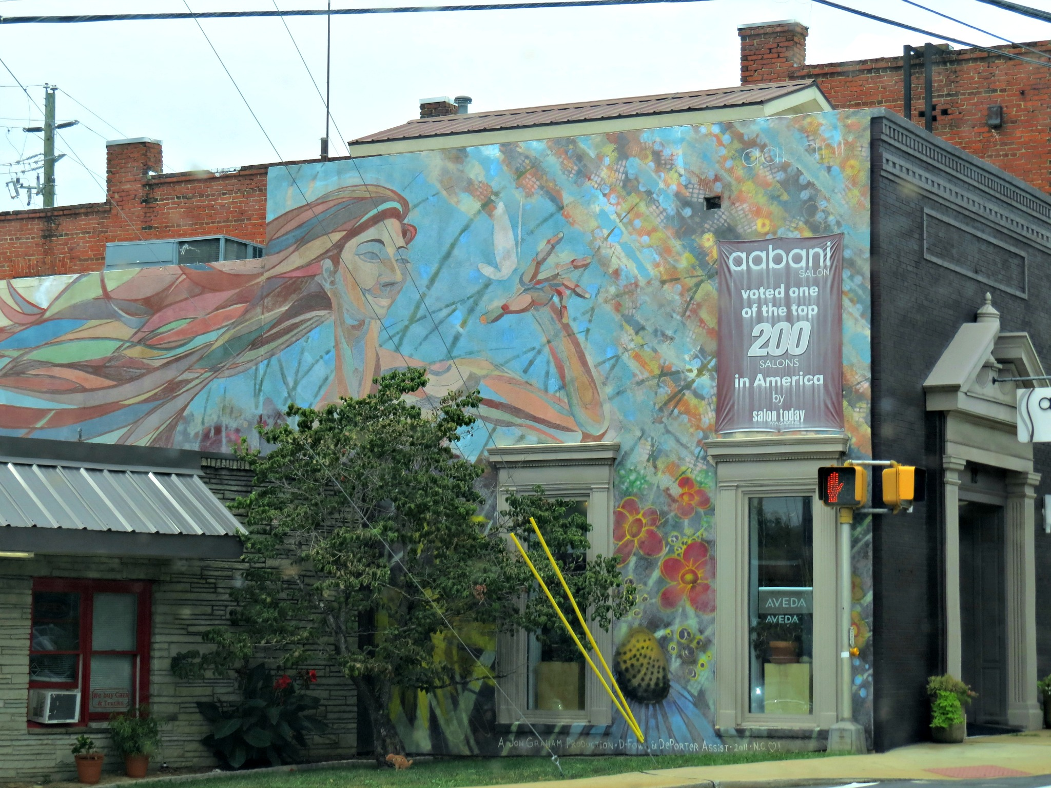 Town Of Weaverville Aabani Mural