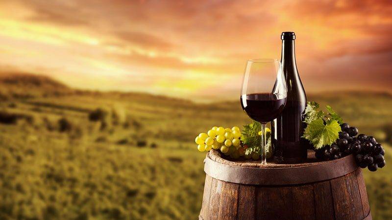 Discover the Business of Sustainable Wine with Sandra Taylor