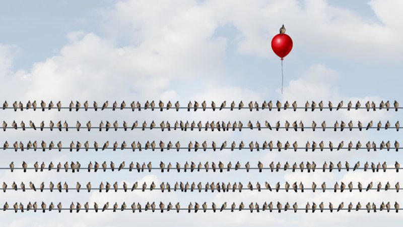 How to Stand Out from the Crowd