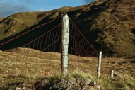 rusty-fence