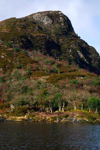 Killarney National Park 13