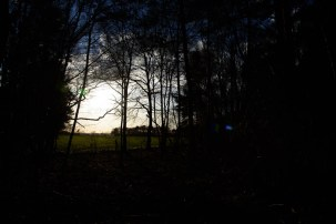 Nikon D750 Testbild unbearbeitet