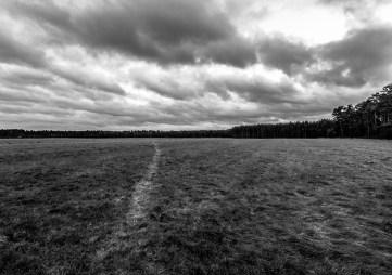Cloudy Path