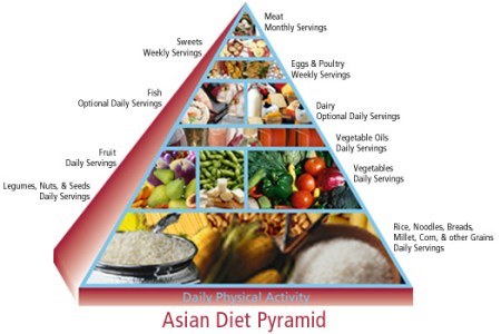 food pyramid lesson grains bread pasta oatmeal rice the orange food group abul khair consumer goods the food pyramid is a place to look to know what food