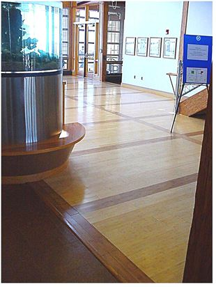 Commercial installation of bamboo flooring with a pattern of carbonized borders and natural field at the Chesapeake Bay Foundation in Annapolis, Maryland