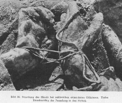 Katyn - pomordowani przez NKWD polscy oficerzy