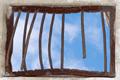CarceralNation.com Logo