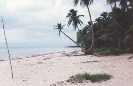 Playa en el municipio de Carmen, Camp.
