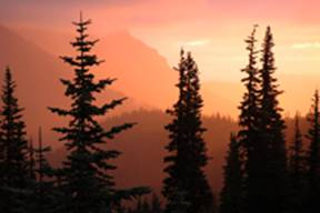 Sunrise, Hurricane Ridge, ONP