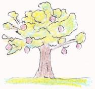 120611リンゴの木