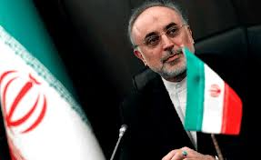 Foreign Minister salehi
