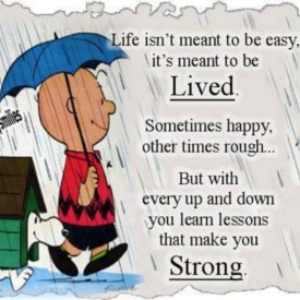 Life isn't meant to be easy. But with every up and down you learn lessons that make you strong