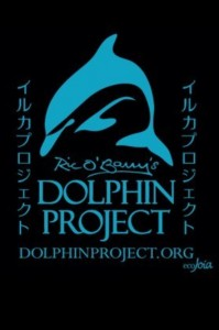 dolphinprojecttattoo