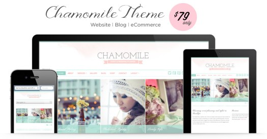 WordPress themes for women