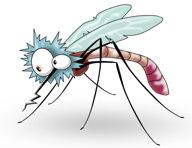 MosquitoCartoon