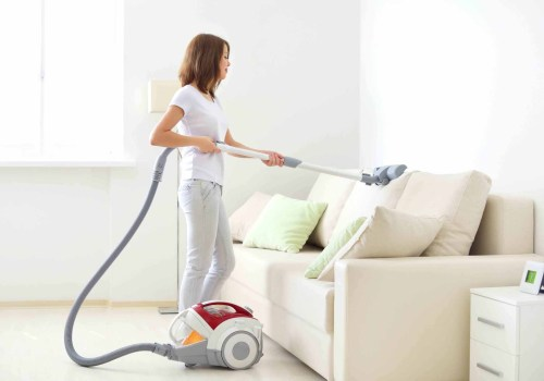 vacuum the fabric furniture