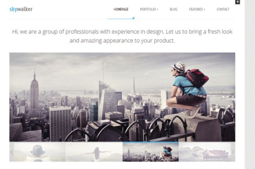 skywalker-portfolio-theme