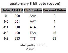 Figure 7. - Quat 3 bit byte, or Codon