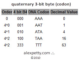 Figure 7. - Quat 3 bit byte, or Codon
